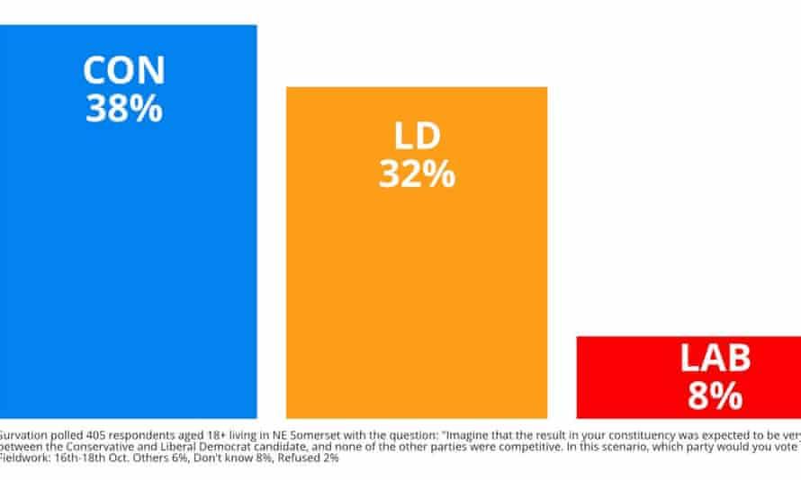 Lib Dem bar chart suggests it can oust Jacob Rees-Mogg.