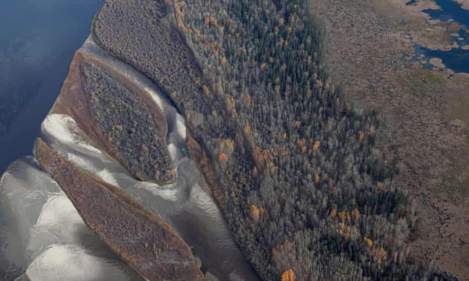 Contested territory … aerial View of the boreal forests in Canada.