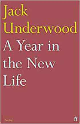 One year in the new life (Faber, £ 10.99)