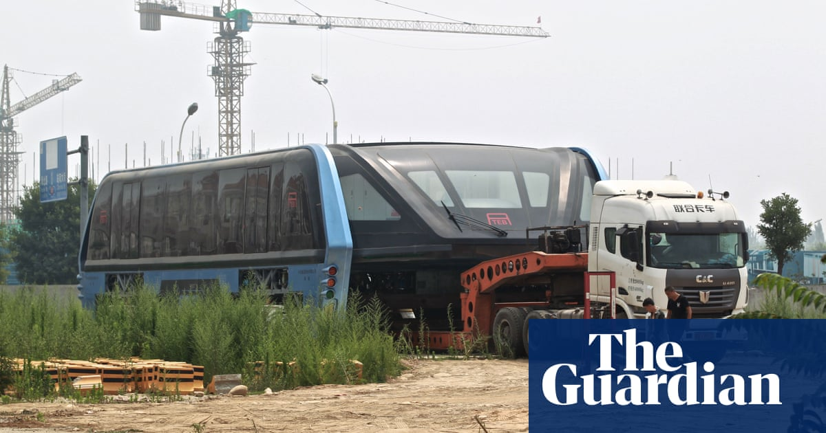 Failure of China's 'straddling bus' shows there's no magic
