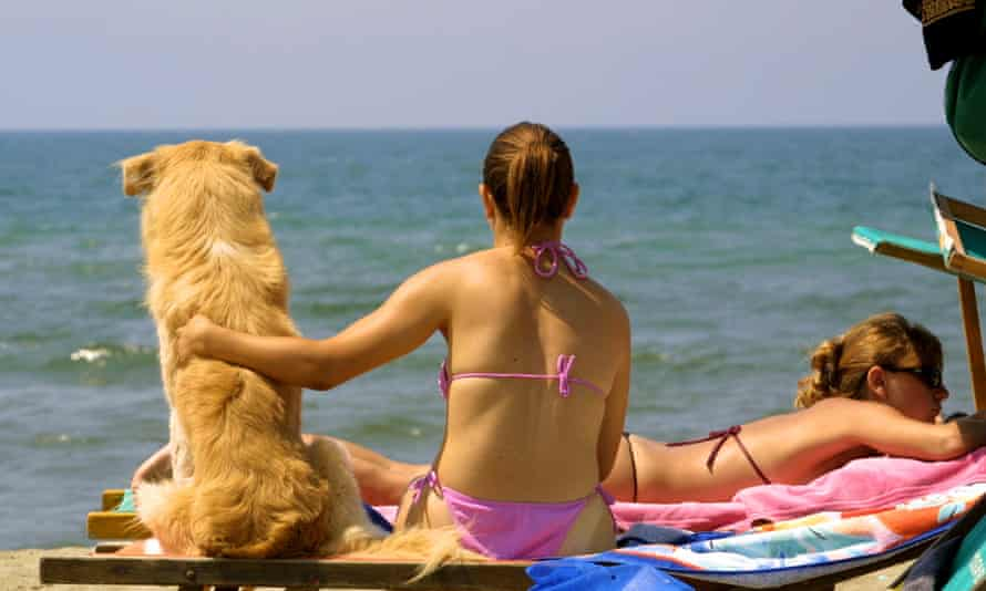 A girl pats her dog as she sits on a beacch and sunbathes.