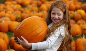 Sainsbury's expects its customers to buy more than 1m pumpkins in the week leading to Halloween.