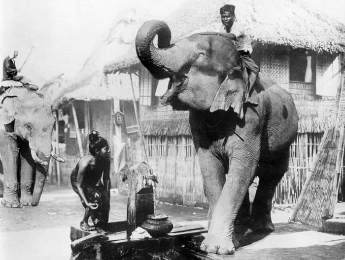 short summary of shooting an elephant by george orwell