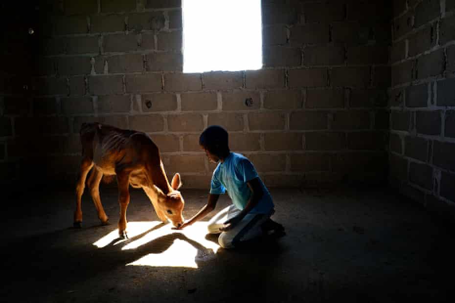 Antonio, 11,  Mozambique