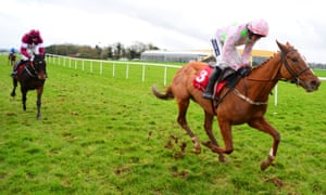 There was widespread expectation that Limini would run in the Champion Hurdle after her defeat of Apple's Jade, above, last month.