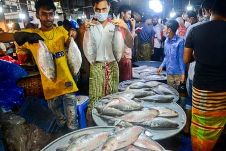 Hilsa Fish Market In Dhaka