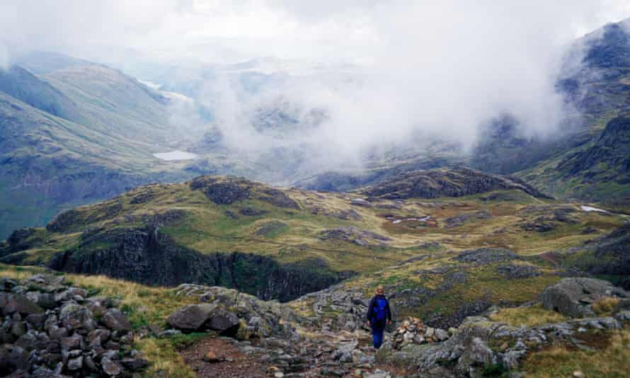 Tracked data and mountain living are key components of Josephine Go Jeffries' essay.