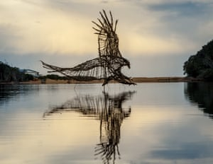 A bird landing in the water