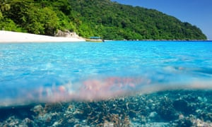 Beach with coral reef underwater