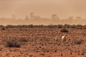 Three states across the east of Australia have seen tighter water restrictions due to the severity of the drought.