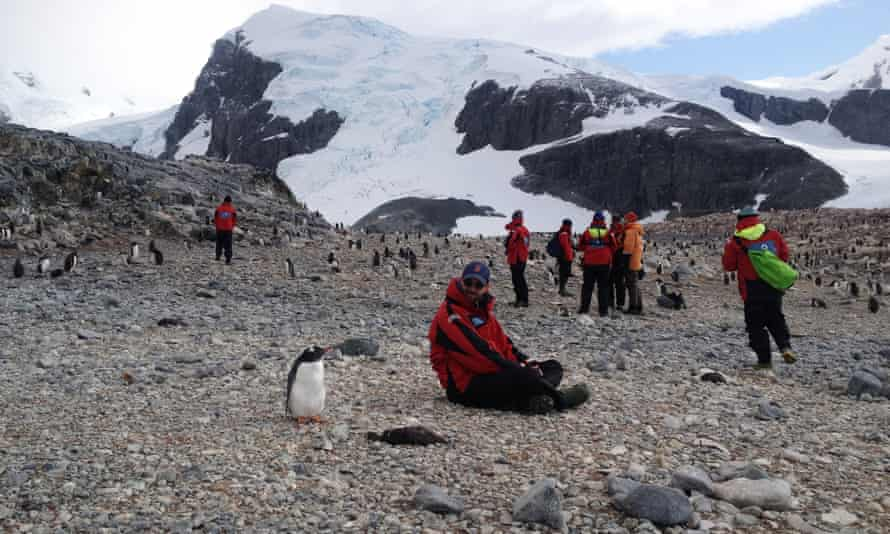 Current regulations mandate how close visitors to Antarctica can get to its wildlife.