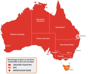 A map showing the parts of Australia vulnerable to fire ant invasion.