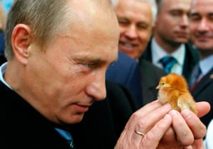 October 2008: Putin holds a chick as he visits the Golden Autumn agro-industrial exhibition in Moscow