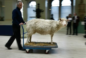 Dolly is wheeled into the National Museum of Scotland in 2003