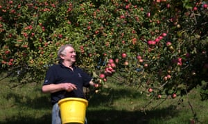 Cider orchards are doing great business thanks to a 17% uptick in cider sales.