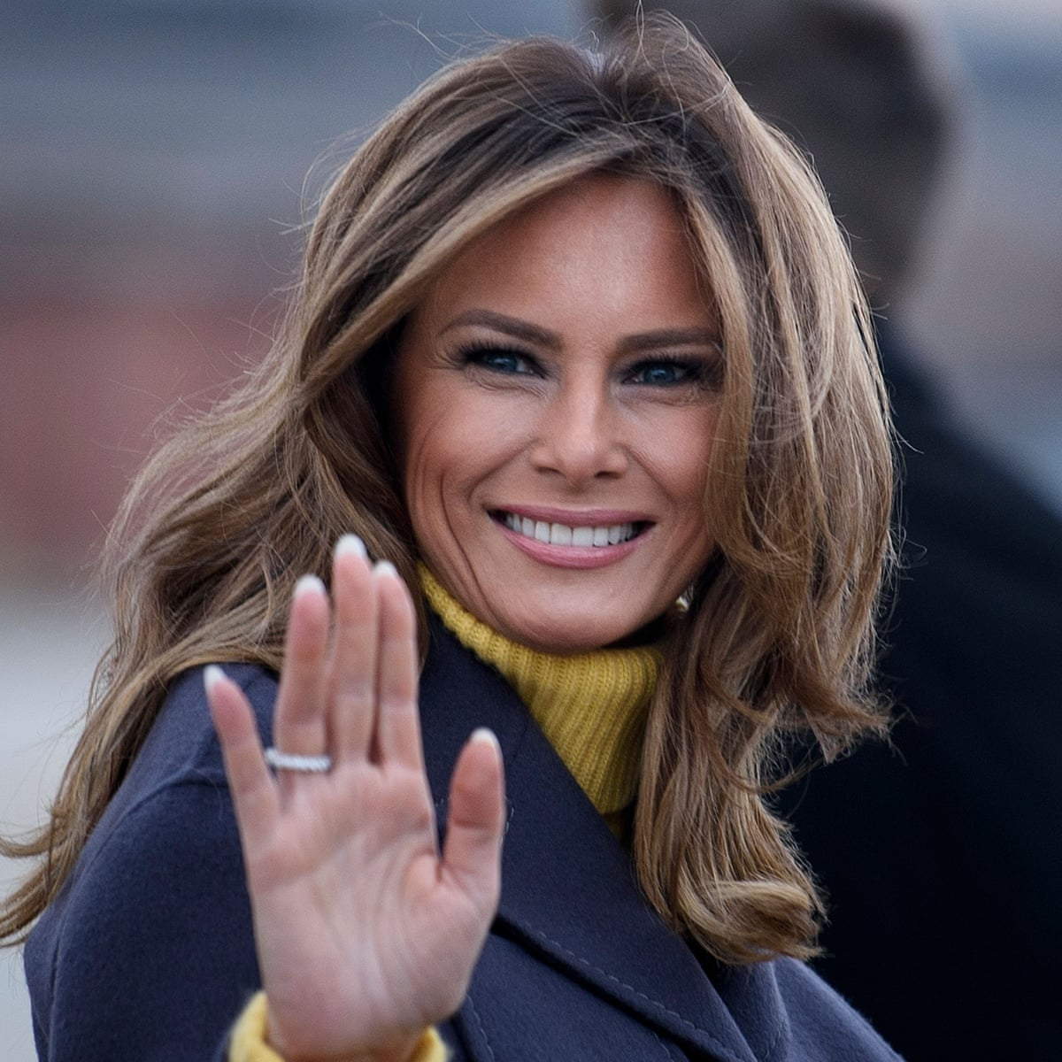 What we learned from Free, Melania, the salacious new book about the first  lady   Books   The Guardian