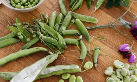 Broad beans should look fresh and firm and be crisp when snapped.