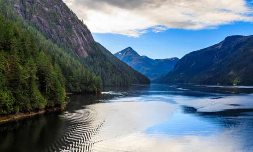 A bay in the Tongass National Forest, Alaska.