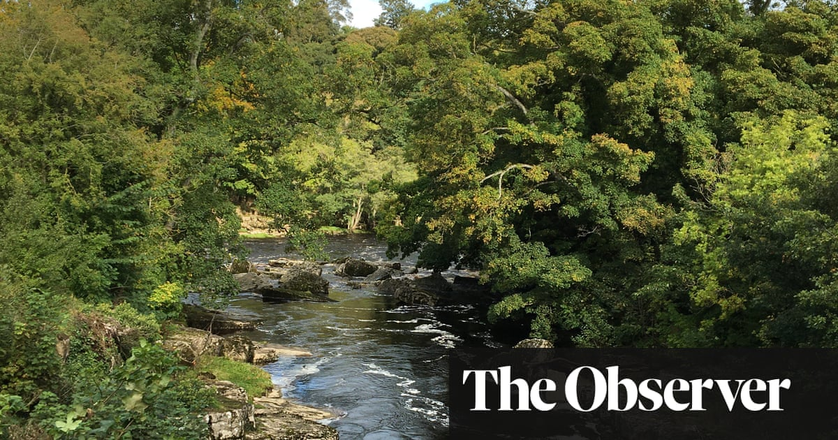 Pretty walks, lovely villages, great cheese: a trip to Teesdale