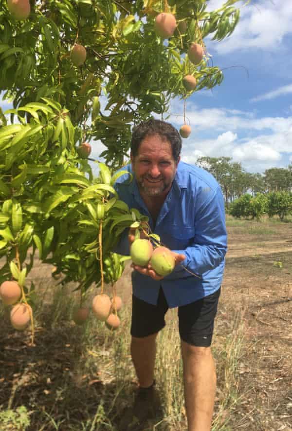 Leo Skliros poses with his mango harvest