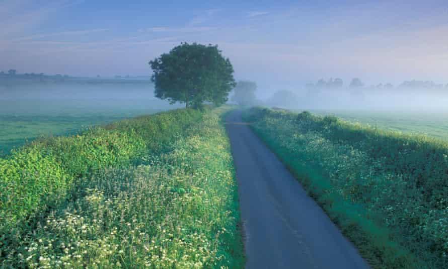 Country lane, Charlton Horethorne, Somerset England