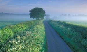 A country lane in Somerset