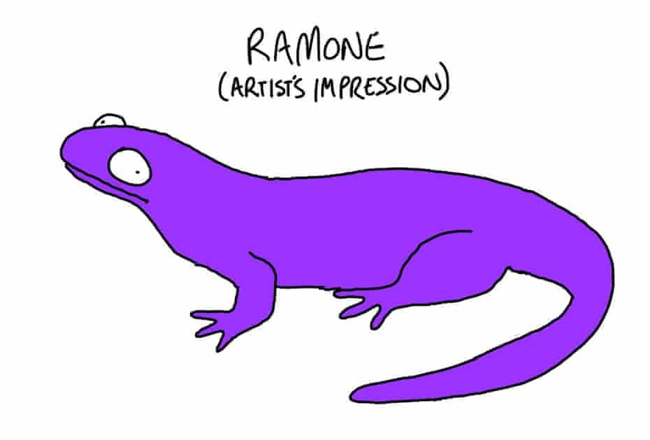 Ramone, Matt Groening's pet salamander.