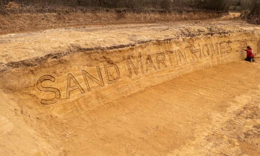 The finished sandbank, ready for nesting sand martins.