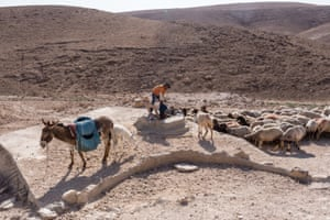 Awdeh's nephew Aid (12) waters the sheep at a reservoir in the firing zone