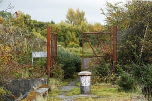Greenery surrounds rusted gate