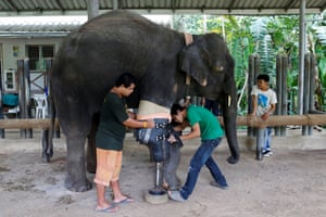 Mosha was just seven months old when she stepped on a mine along the Thai-Myanmar border in 2007