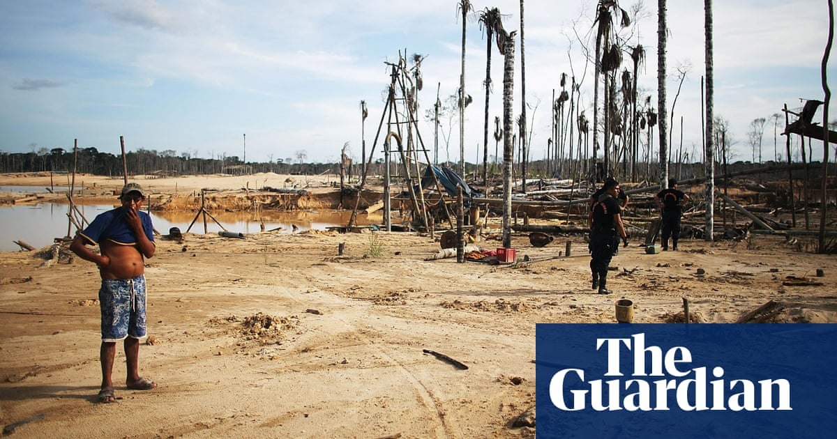 Gold-mining in Peru: forests razed, millions lost, virgins