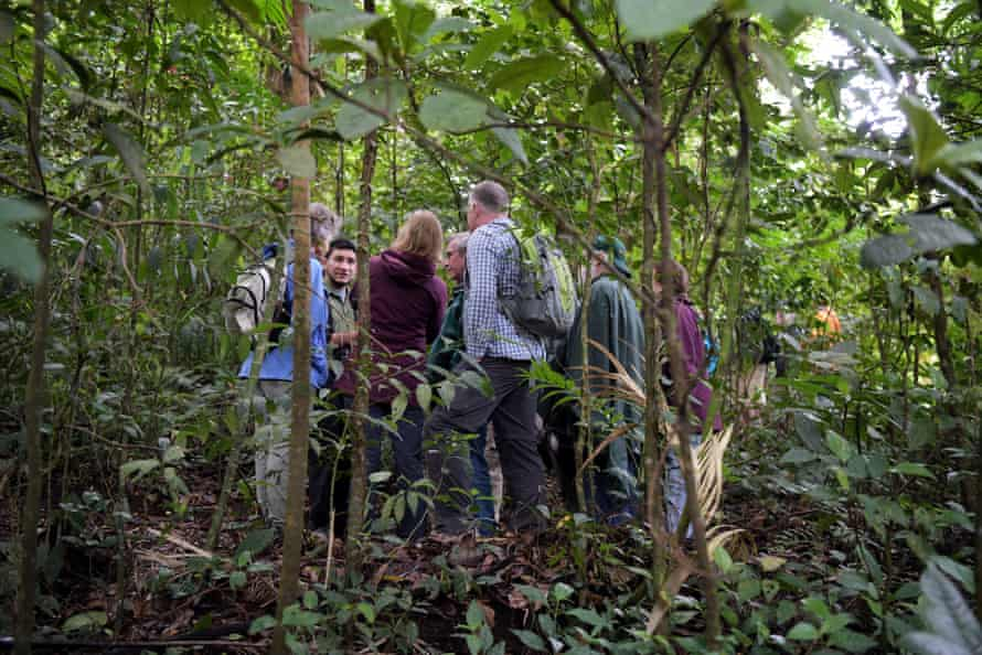 Tourists inside the cloud forest