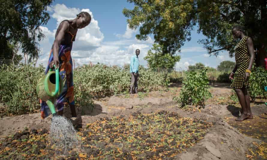 الطلاب يروون النباتات في مركز التدريب المهني Save the Children في جنوب السودان.