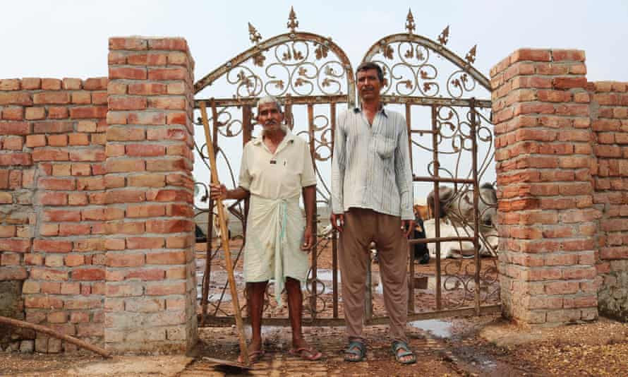 Two workers at a gaushala, where strays cows are given homes and attended to for life.