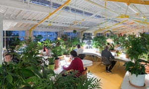 Tech businesses commune with their 'inner lotus-eater' at Second Home, a shared workspace created in Lisbon by Rohan Silva and Sam Aldenton.