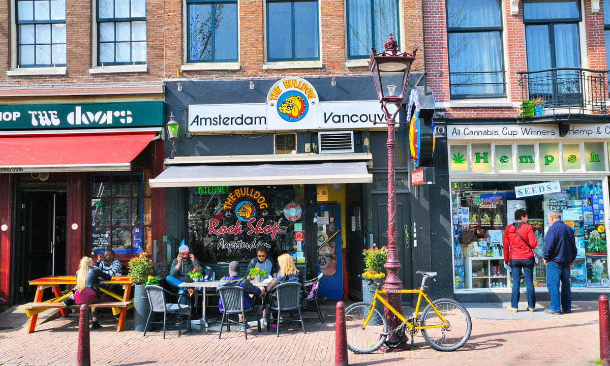 Amsterdam looks to bar foreign visitors from buying cannabis | World news |  The Guardian