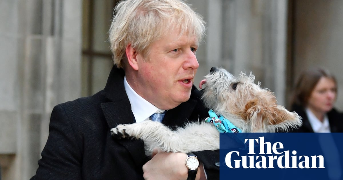 Horny dogs: what can Boris Johnson do about his pet Dilyn's romantic urges?