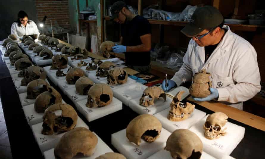 Abel Guzman, Rodrigo Bolanos and Miriam Castaneda, biological anthropologists, examine skulls.