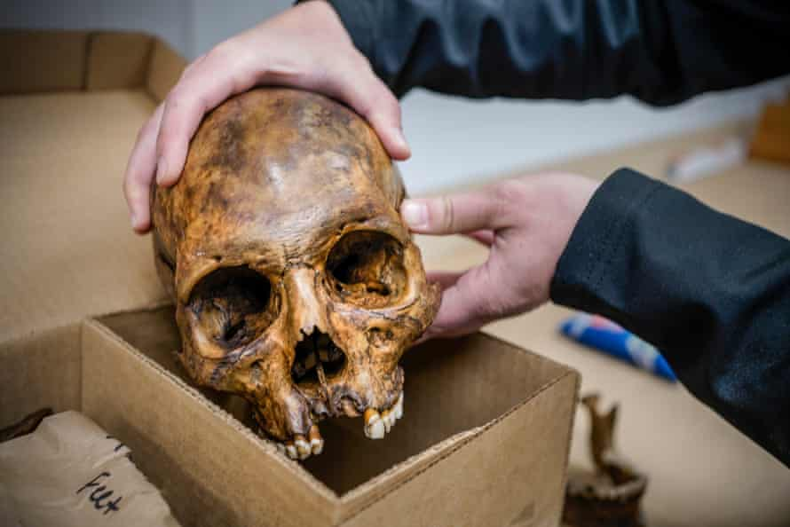 Graduate student Chloe McDaneld holds the skull of an unidentified migrant at the Operation Identification facility in December. Photo by Gabriela Campos