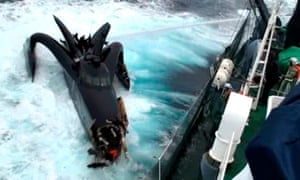 Despite a US court ruling that conservationists cannot attack Japanese whaling boats, Sea Shepherd says it will not stop its annual protection campaign in the Southern Ocean.