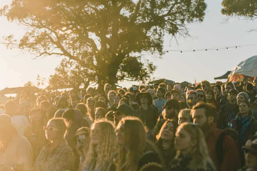 A crowd near a tree at the Meadow festival