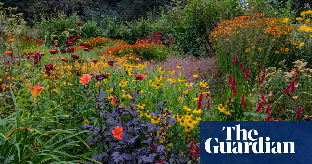 Gardens Shropshire S Late Bloomer Life And Style The Guardian