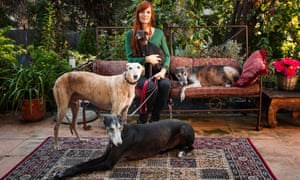 Klea Levin with some of her rescued greyhounds