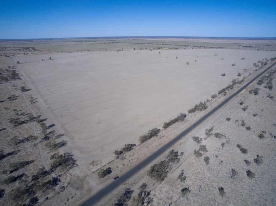 Cleared land near Walgett