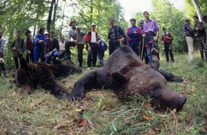 Hunters pay up to €10,000 to trophy hunt in the Carpathian mountains