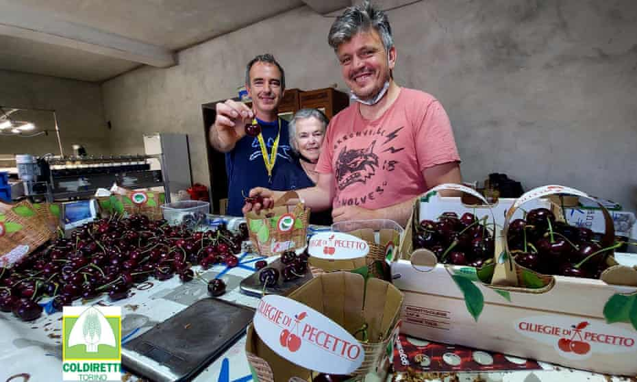 The record-breaking carmen cherry was grown by Alberto and Giuseppe Rosso from Pecetto Torinese.