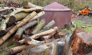 Alder logs stacked ready for charcoal production