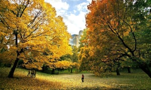 People enjoy a beautiful fall day in New York's Central Park as the trees turn a brilliant autumn colour