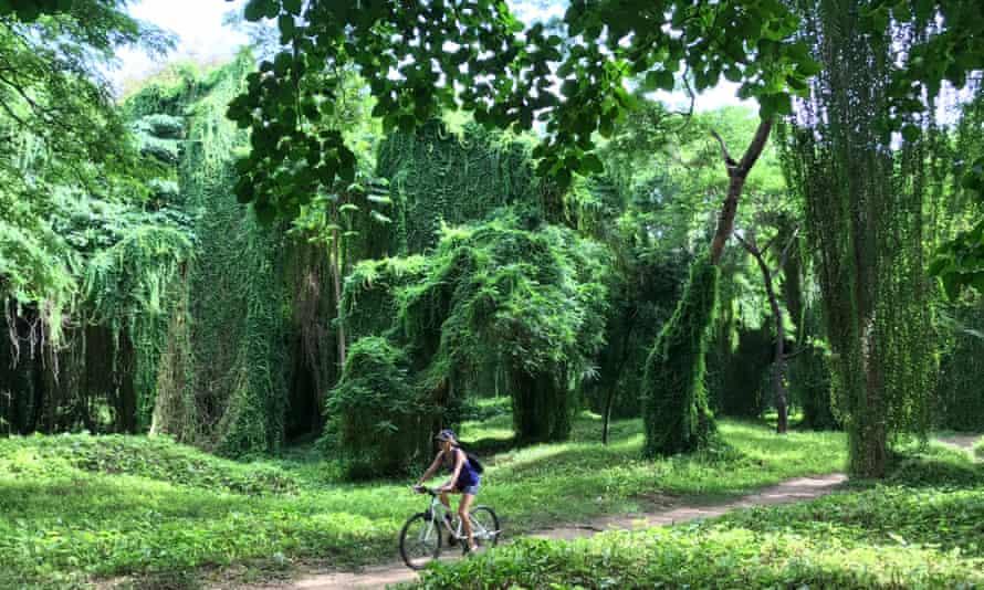 El Bosque, Havana